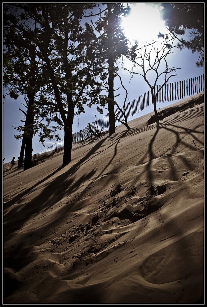 Dune du Pilat_La Teste-de-Buch