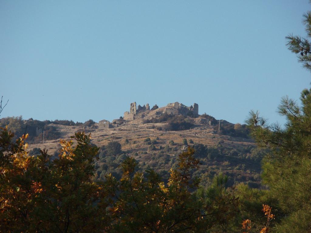 les ruines du château féodal de Pierre-Gourde_Valence