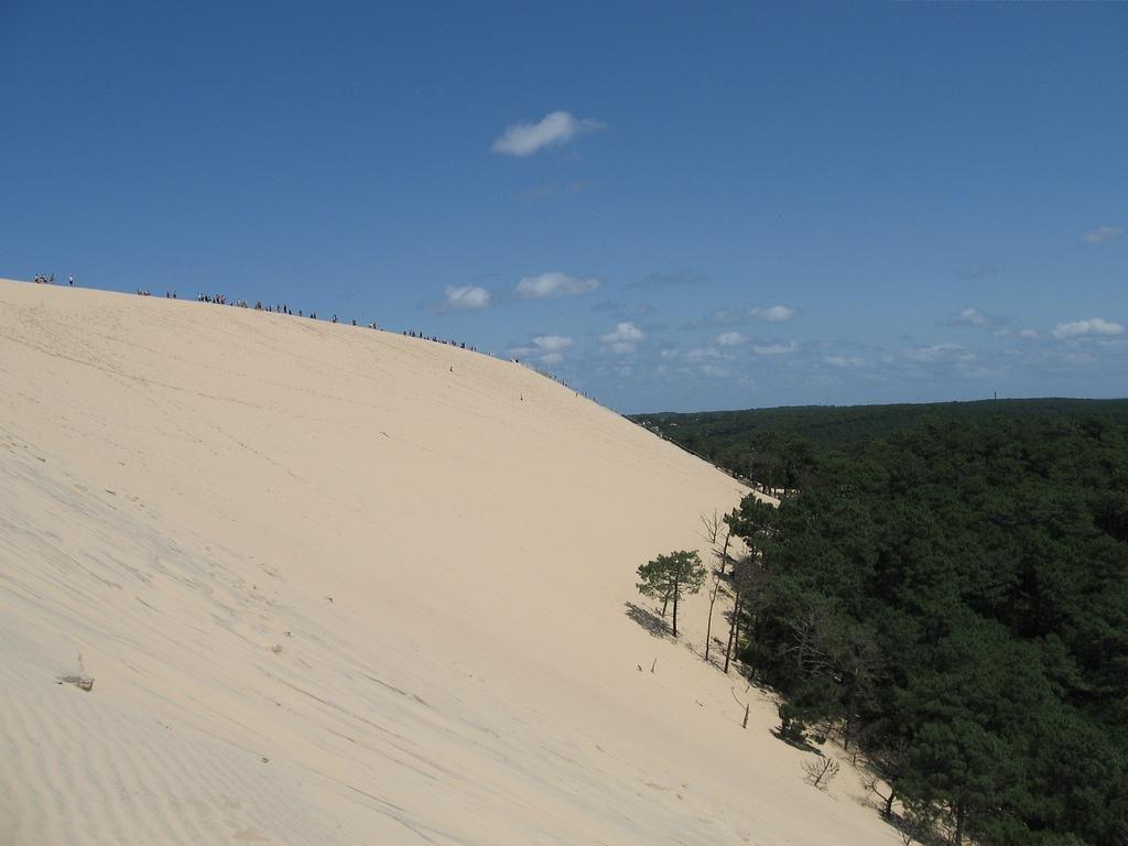 Dune du Pilat_La Teste-de-Buch (1)
