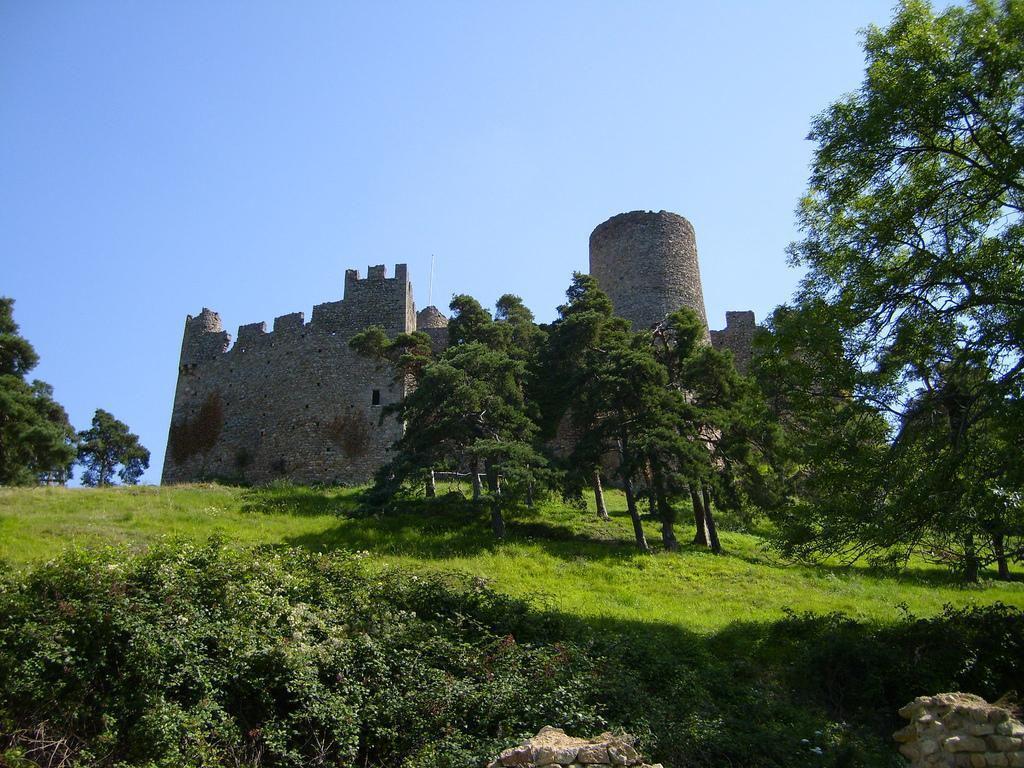 Château de Couzan_Sail-sous-Couzan