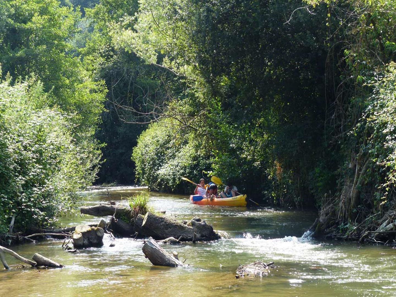 Jungle Canoe