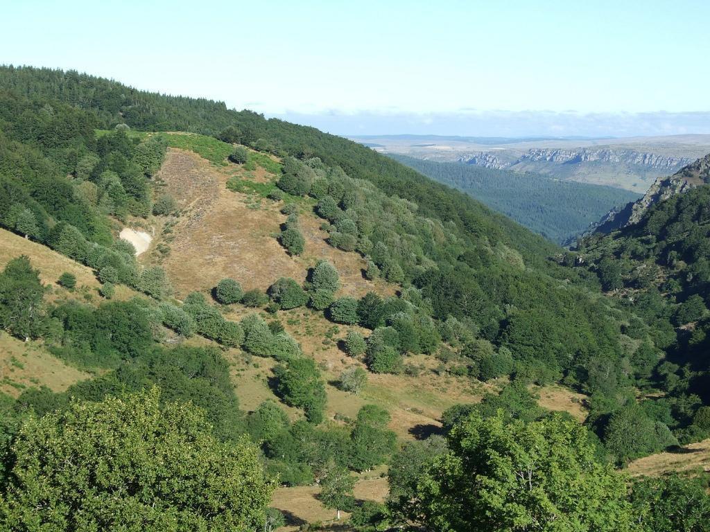Image : Office de Tourisme Mont Aigoual Causses Cévennes