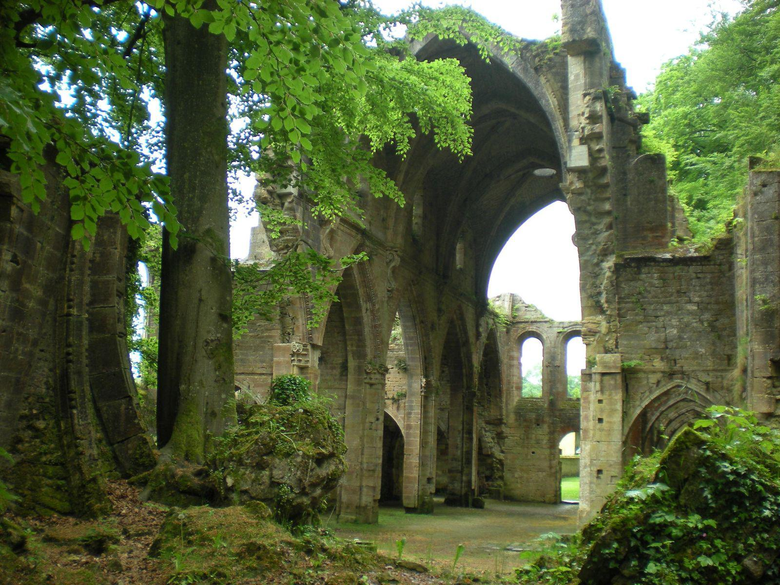 Abbaye de Trois Fontaines_Troisfontaines