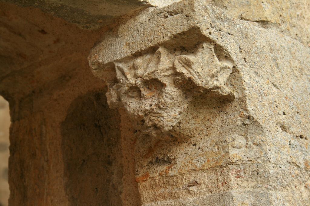Abbaye des Vaux de Cernay_Cernay-la-Ville (3)