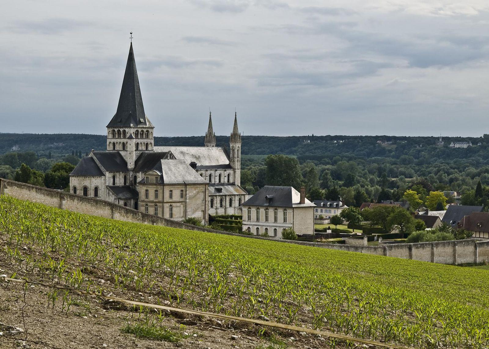 Abbaye Saint-Georges-de-Boscherville_Saint-Martin-de-Boscher