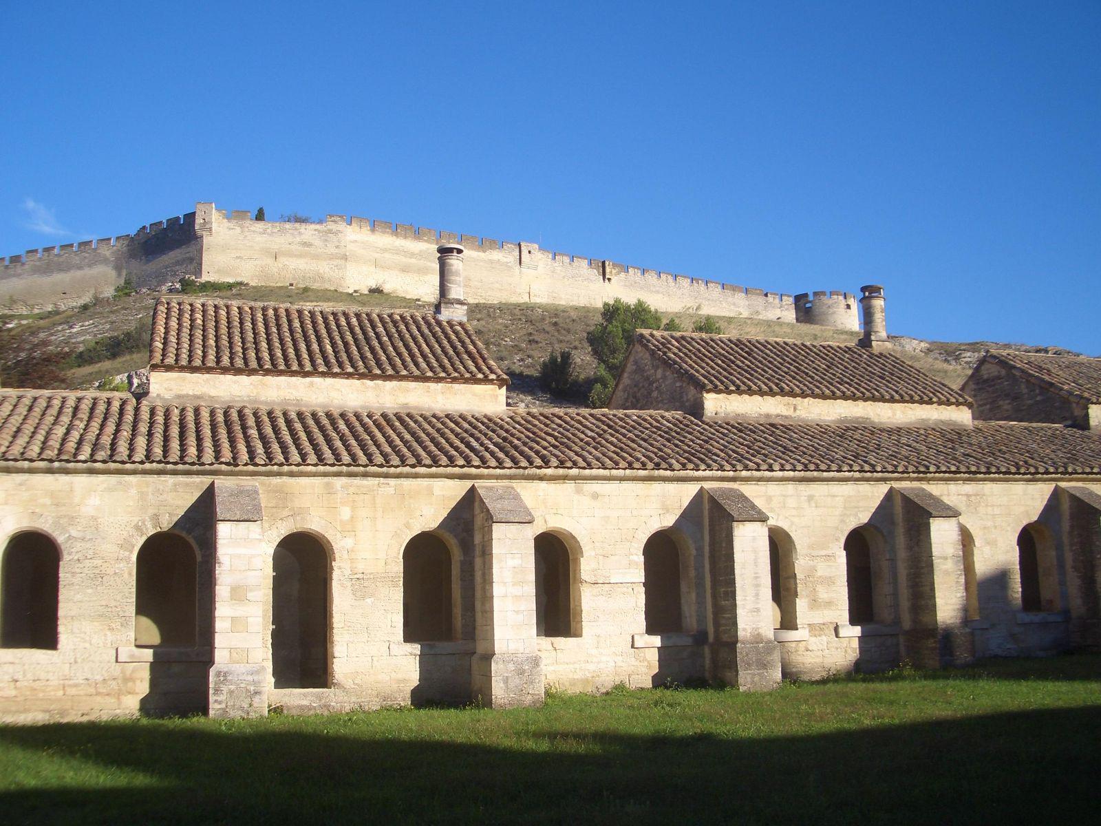 Image : Chartreuse Pontificale du Val de Benediction