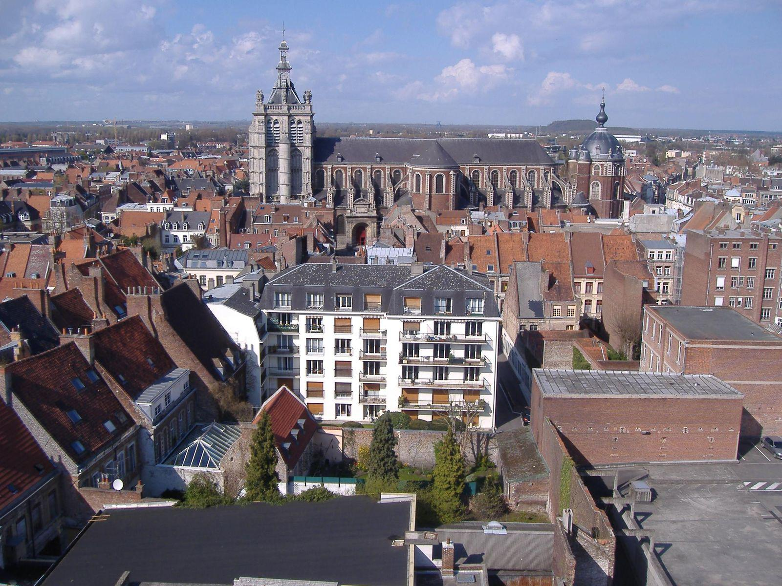 Collégiale Saint-Pierre_Douai