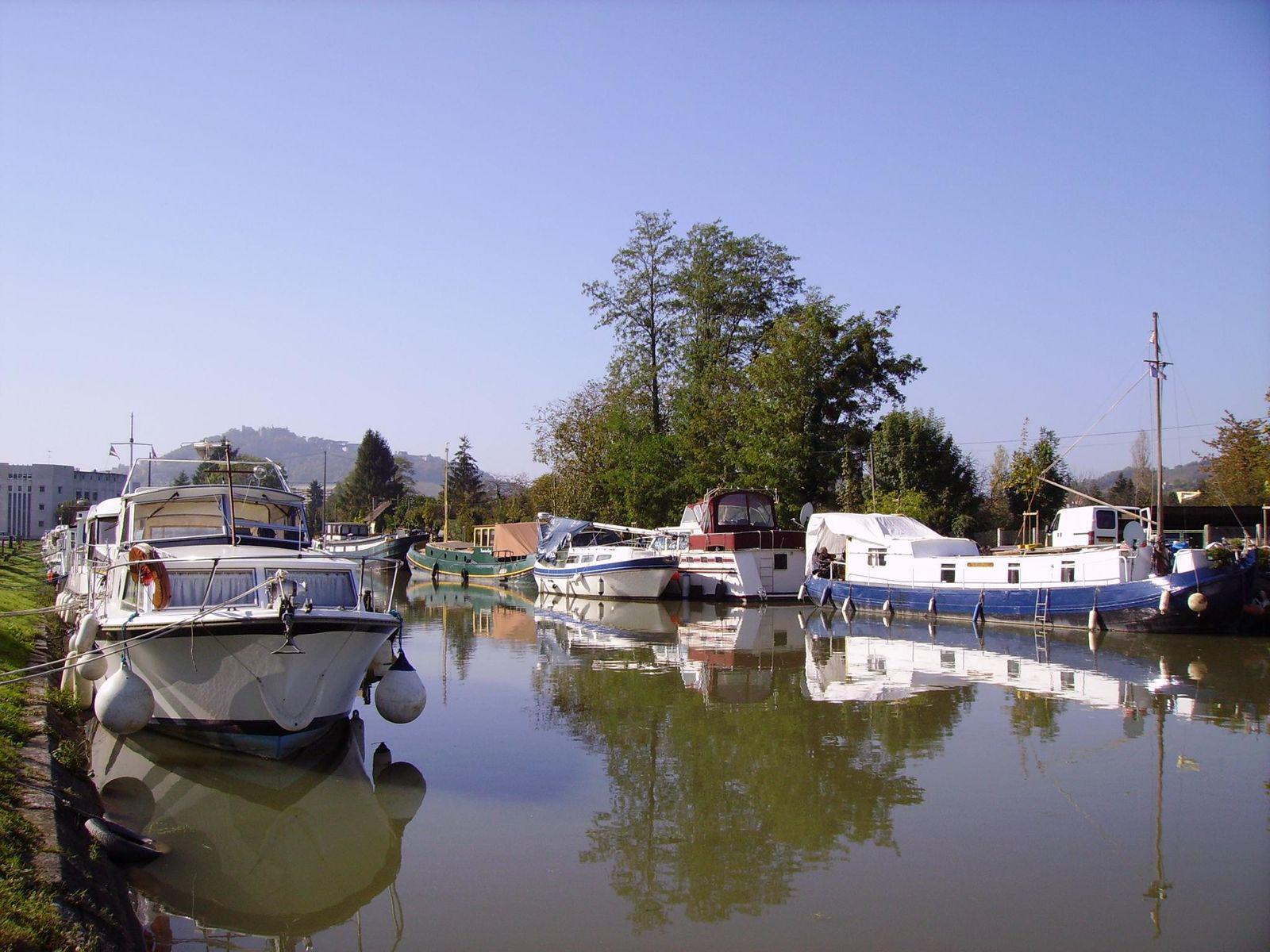 Canal latéral à la Loire_Loiré