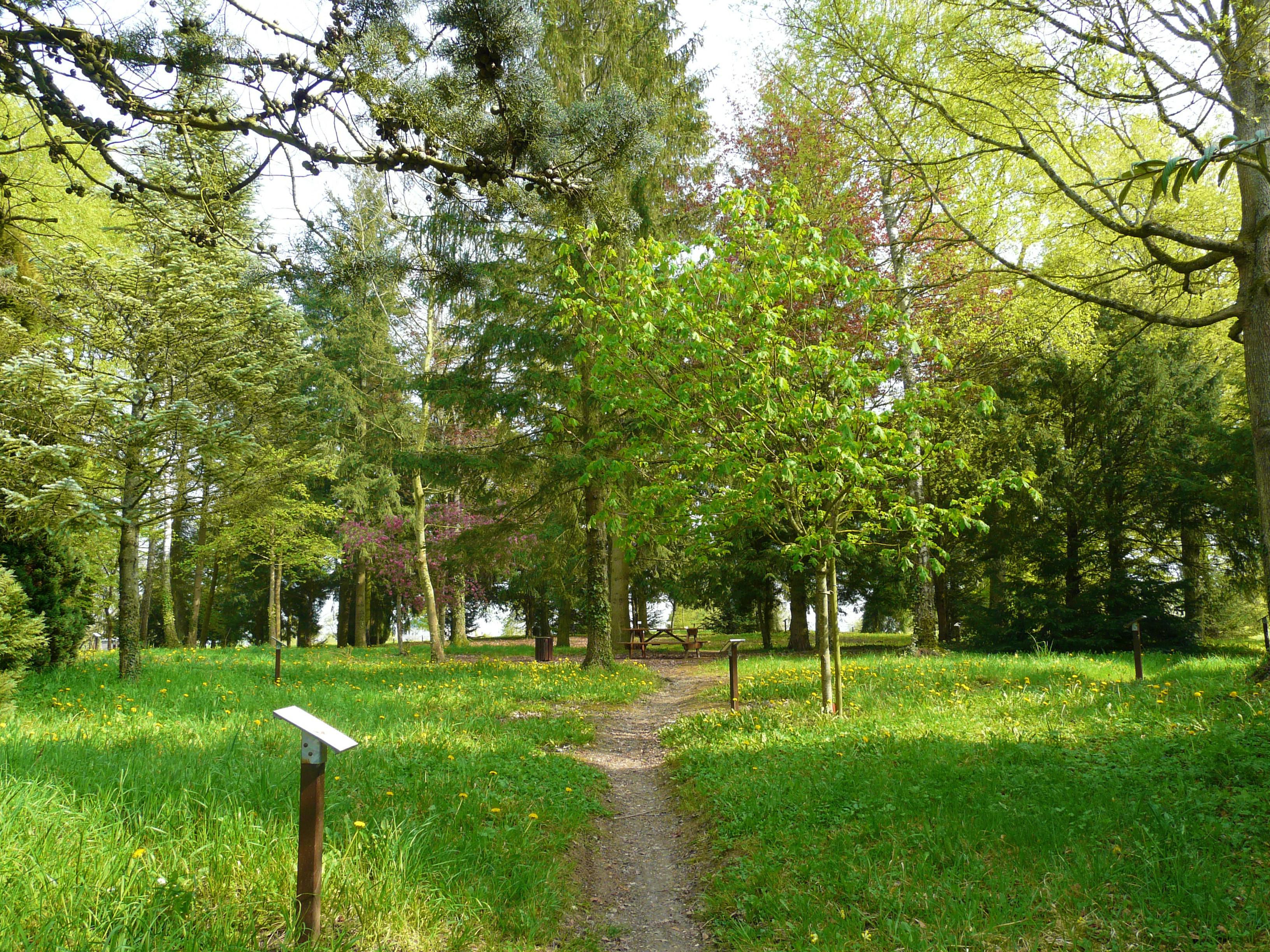 Arboretum de Brienne-le-Château
