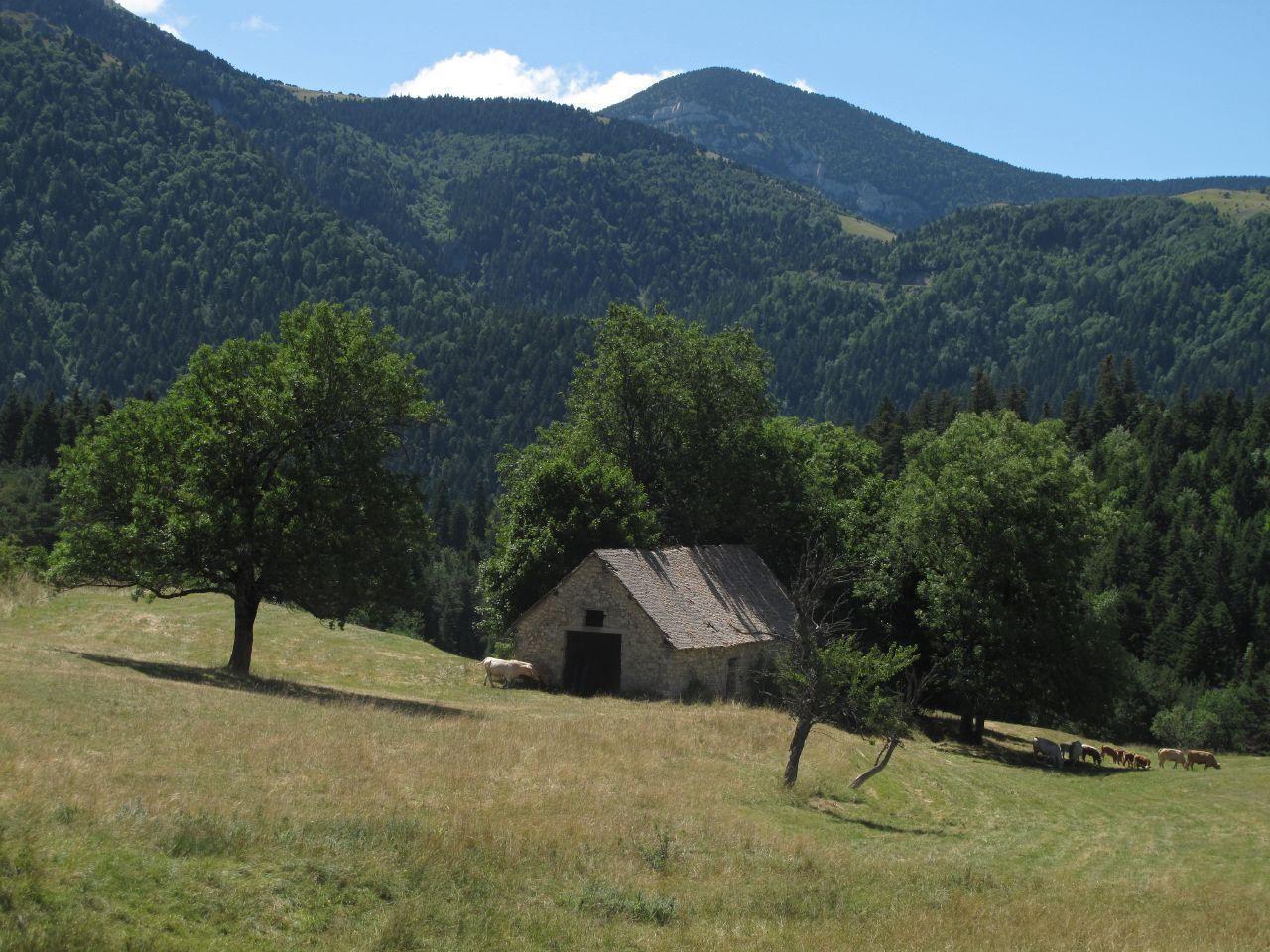 Image : Col de Menée