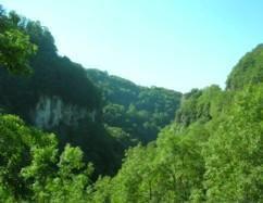 Gorges de Chailles_Saint-Franc
