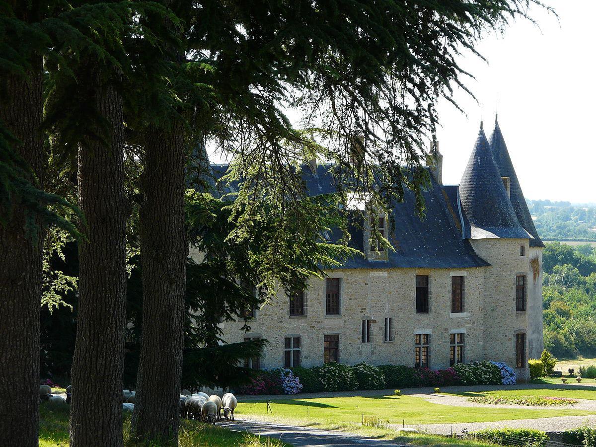 Le château de la Roche Faton