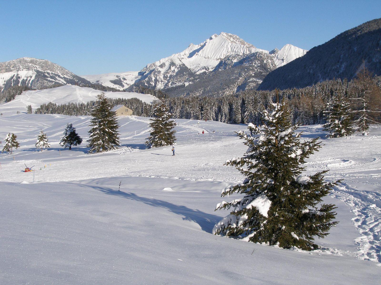 Plateau des Glières_Thorens-Glières (1)