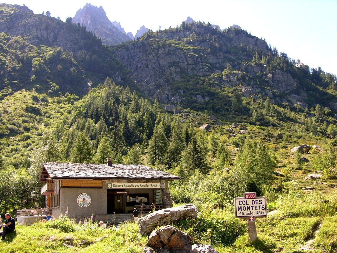Réserve naturelle des Aiguilles Rouges_Chamonix-Mont-Blanc (1)