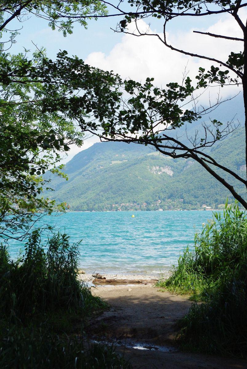 Réserve naturelle du Bout du Lac_Doussard