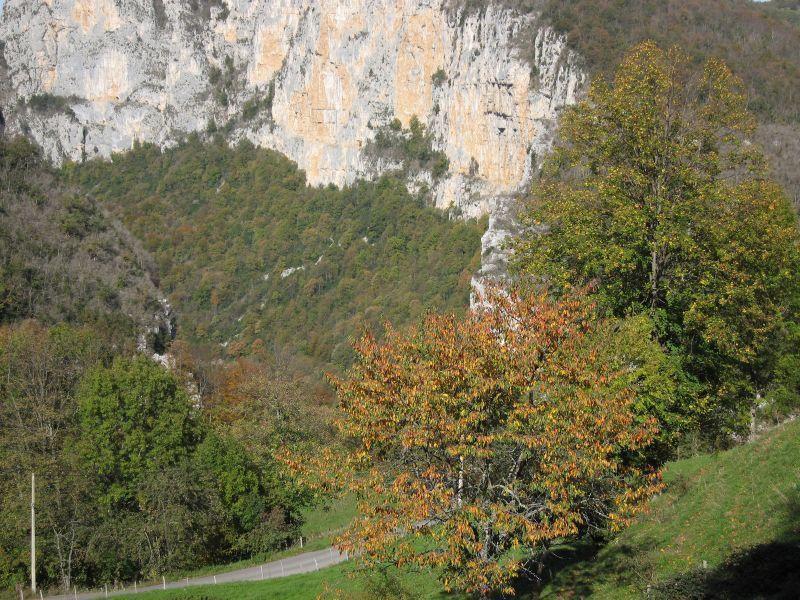 Route des gorges du Nan_Cognin-les-Gorges