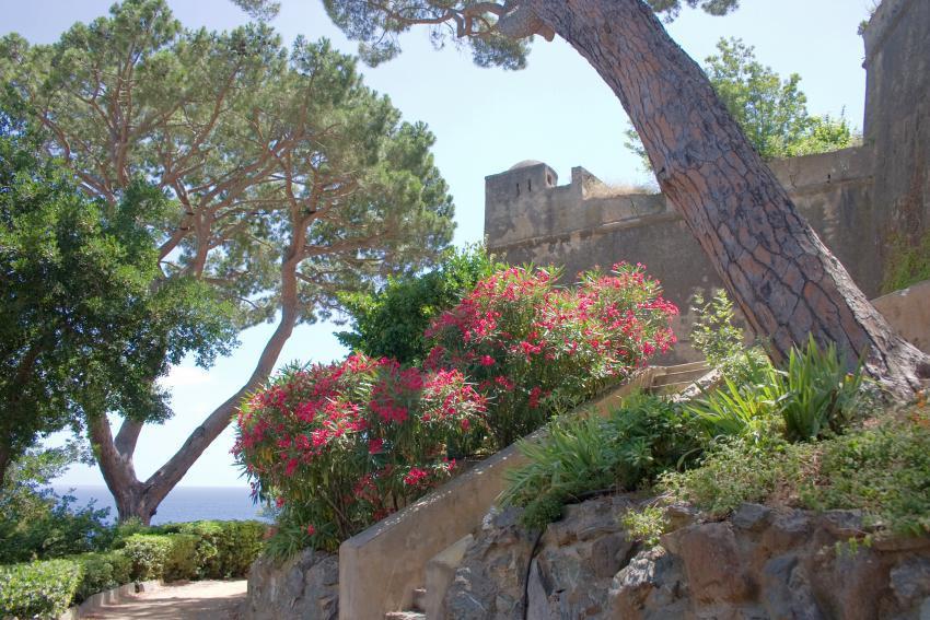 Jardin Romieu