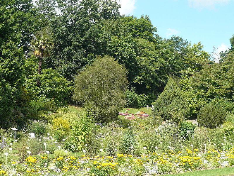 Parcs jardins botaniques arboretums calvados 14 for Plantes et arbustes de jardin