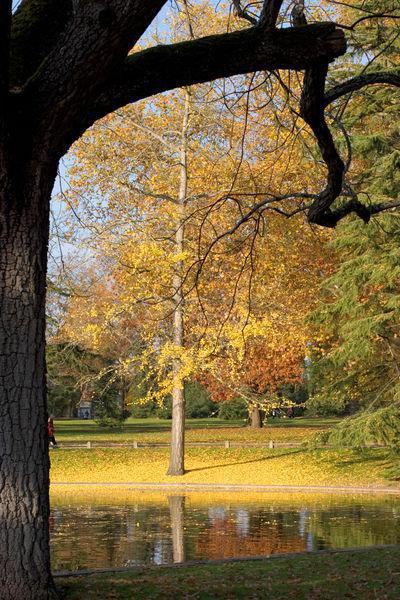 Image : Parc Bordelais