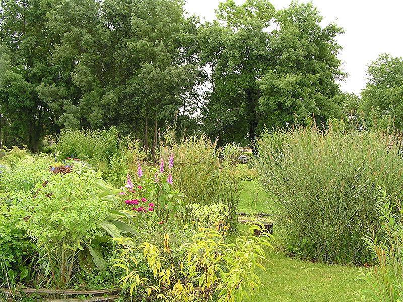 jardin de Chalais