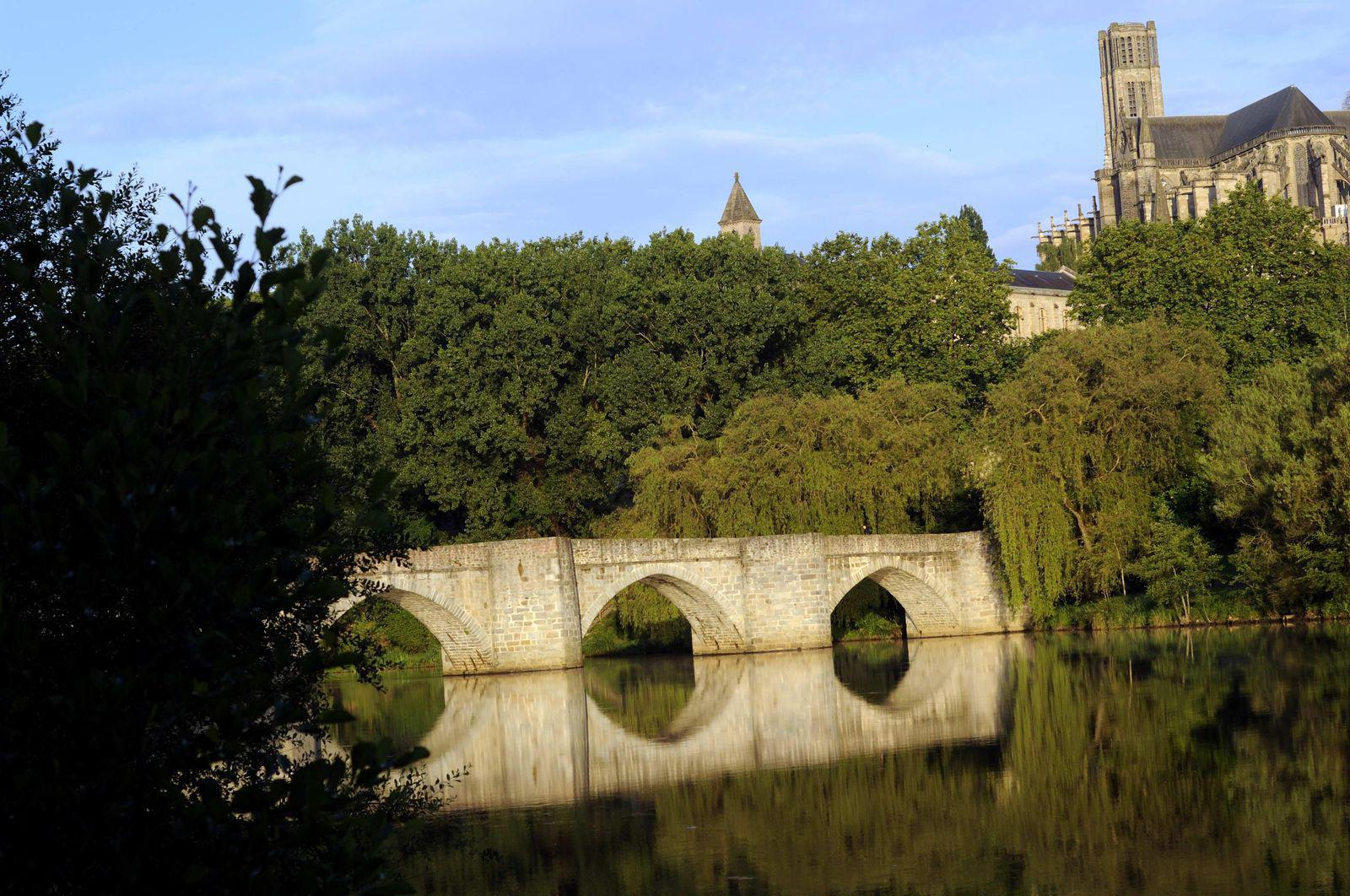 Cathédrale Saint-Etienne_Limoges (1)