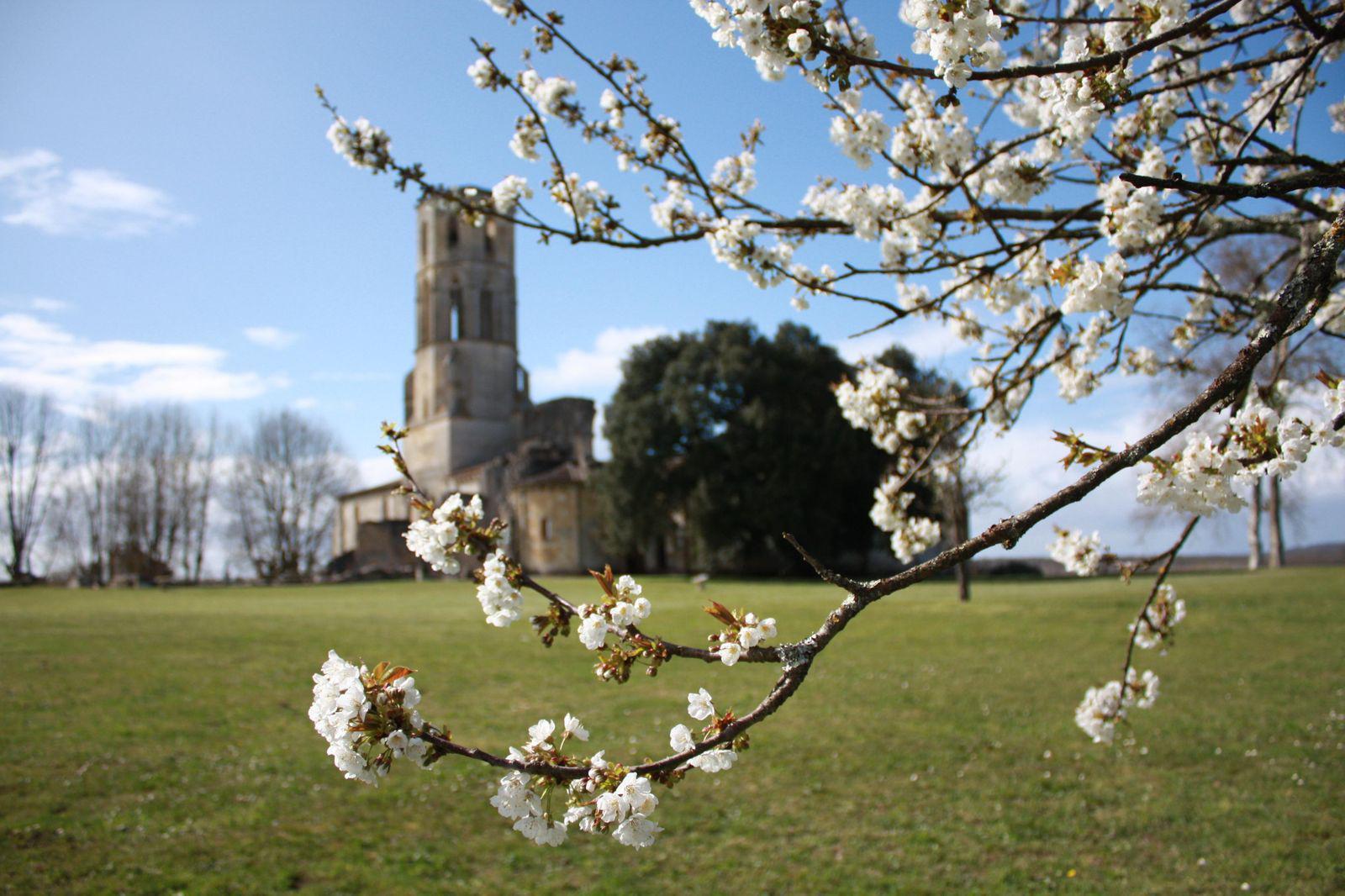 Image : Abbaye de la Sauve Majeure