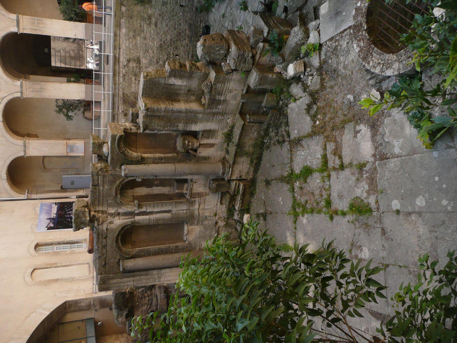 Museon Arlaten_Arles