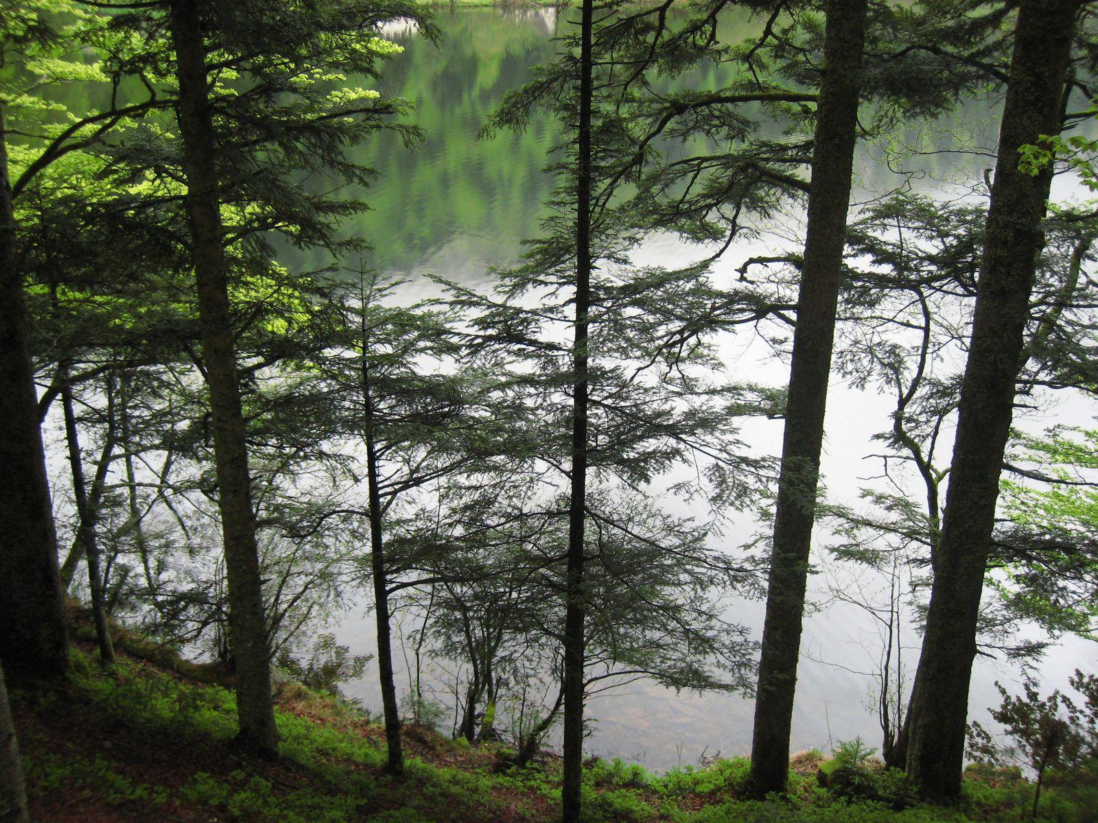 Lac de Retournemer_Xonrupt-Longemer