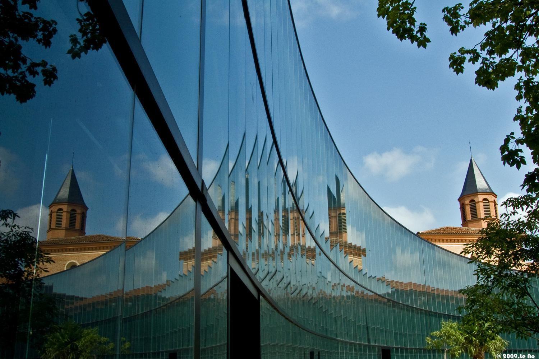 Muséum d'histoire Naturelle_Toulouse (1)