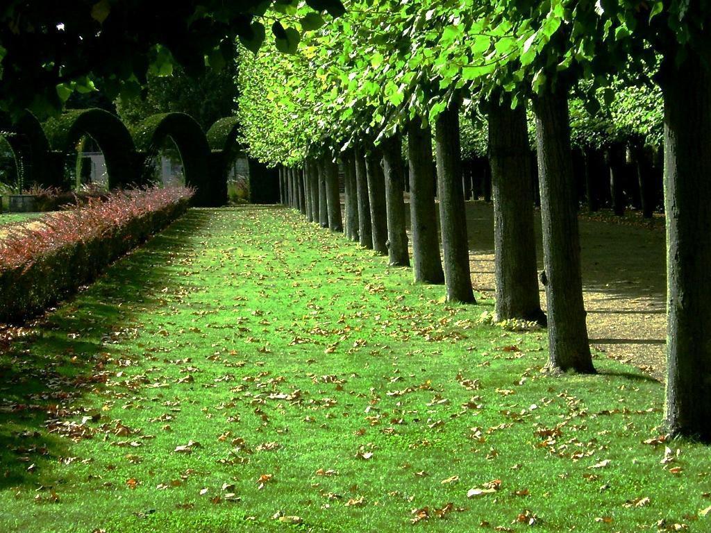 Jardin des Prés-Fichaux_Bourges