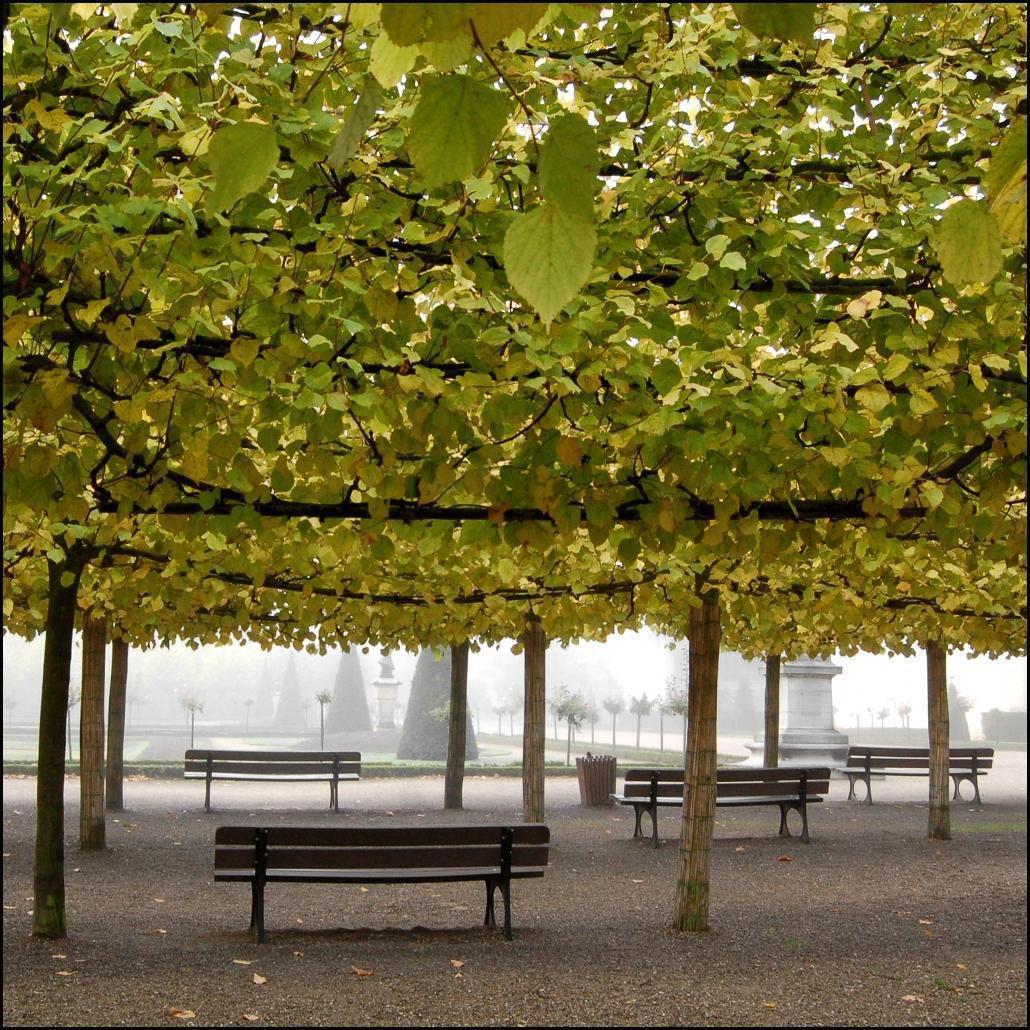 Jardins de l'Archevêché_Bourges