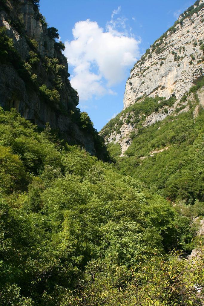 haute Vallée du Loup_Lorgues