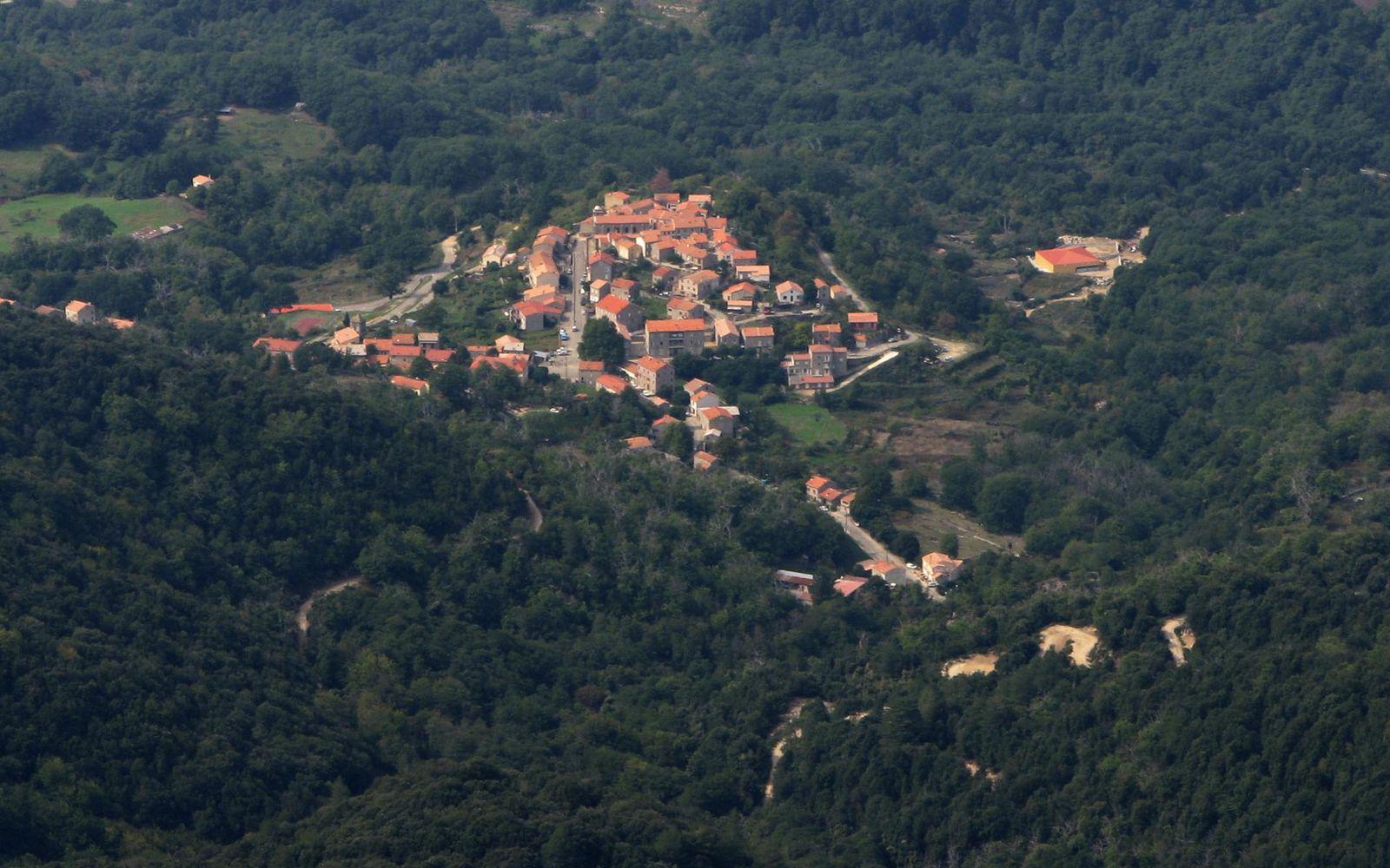 Forêt DE ZICAVO_Zicavo