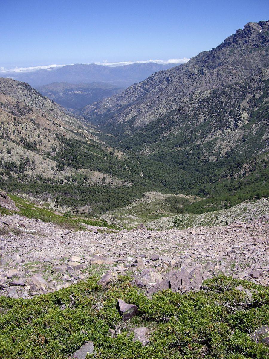 Forêt DE la TARTAGINE_Mausoléo