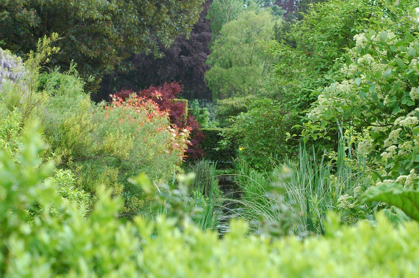 Jardin des plantes_Rouen