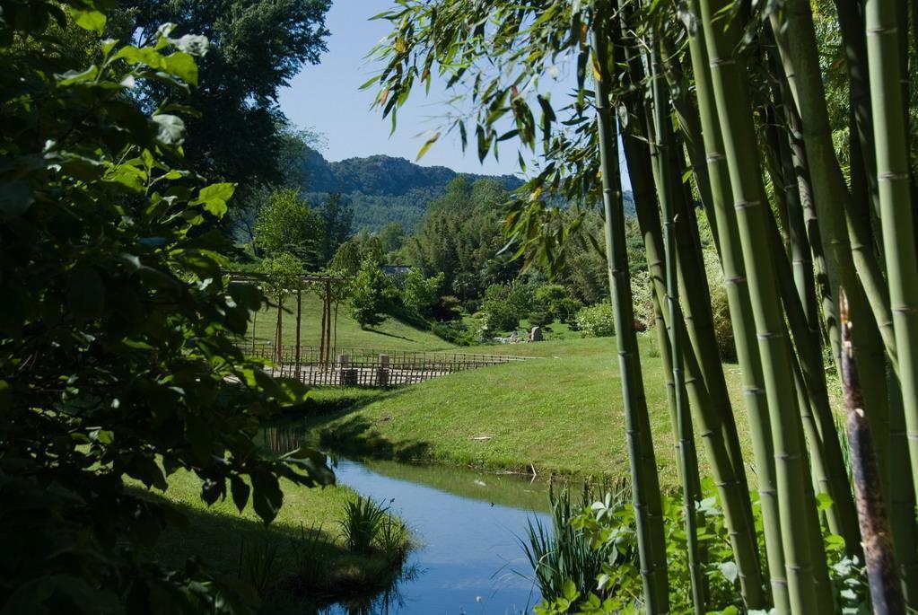 Bambouseraie de PRAFRANCE_Générargues