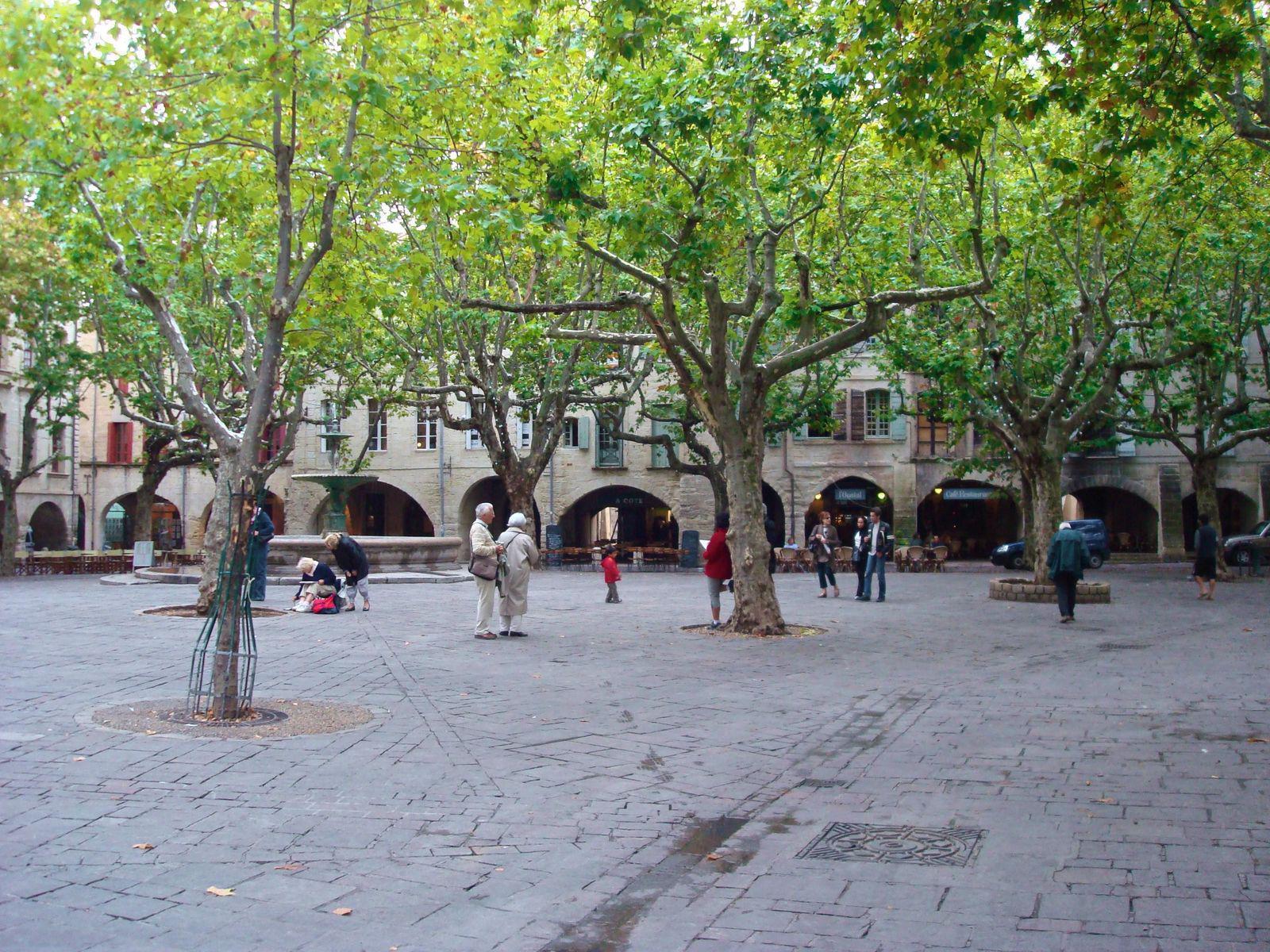 Image : Place aux Herbes
