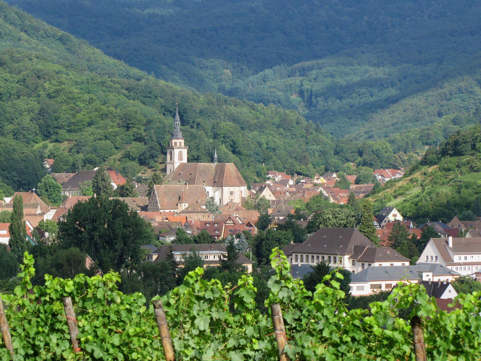 Église Abbatiale Saints-Pierre-et-Paul_Andlau