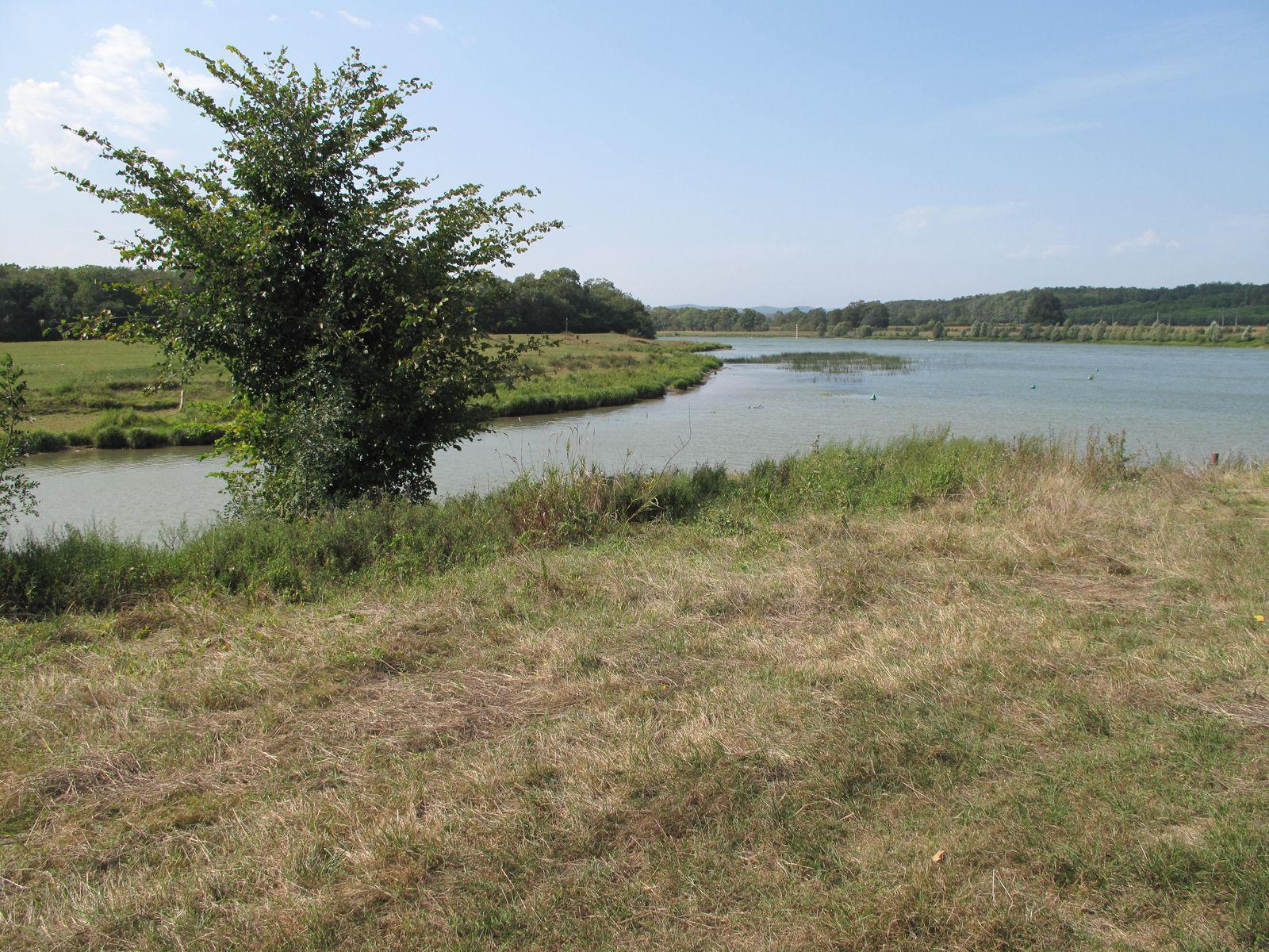 Réseve Naturelle de la Truchère_La Truchère