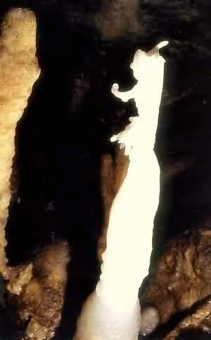 Image : Grotte de la deveze