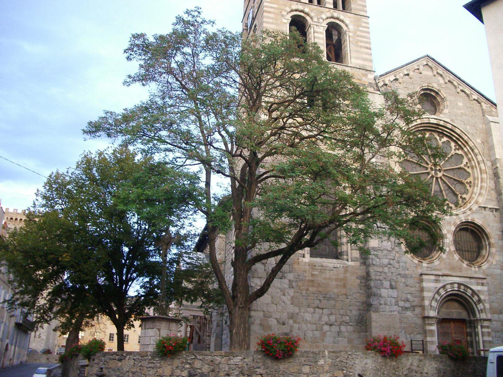 Cathédrale Notre-Dame du Réal d'Embrun_Embrun