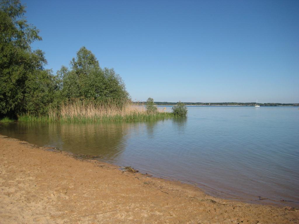 Lac de la forêt d'Orient_Rouilly Sacey