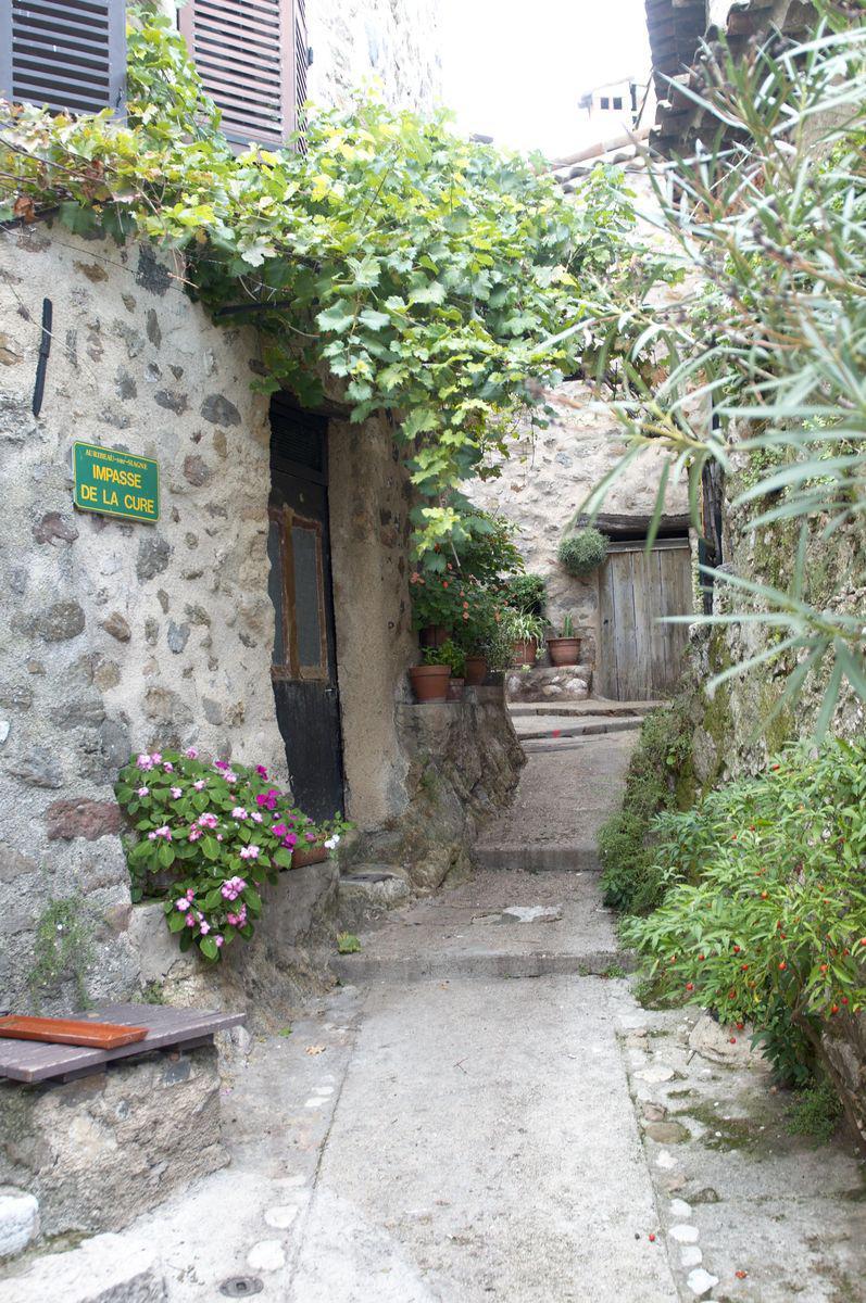 Auribeau-sur-Siagne (1)