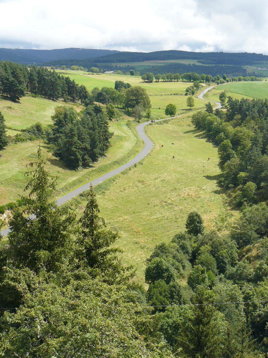 Route de campagne aux environs de Ruynes-en-Margeride (15320, Cantal, 15)