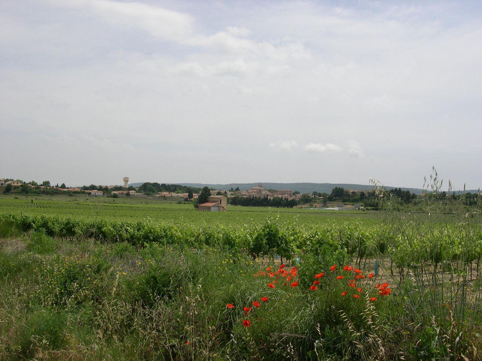 Image : Office de Tourisme* de Poussan