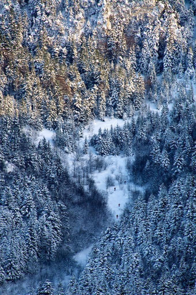 Station de ski de Lans en Vercors_Lans-en-Vercors (1)
