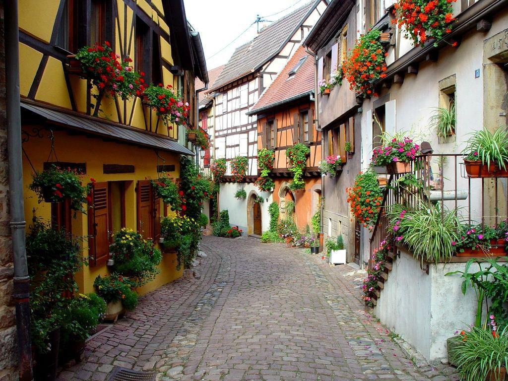 Eguisheim (3)
