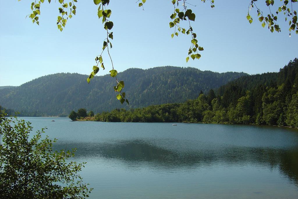 Lac_Gérardmer (1)