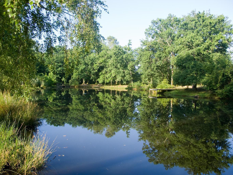 Étang et Arborétum de Moré à Morcenx_Morcenx