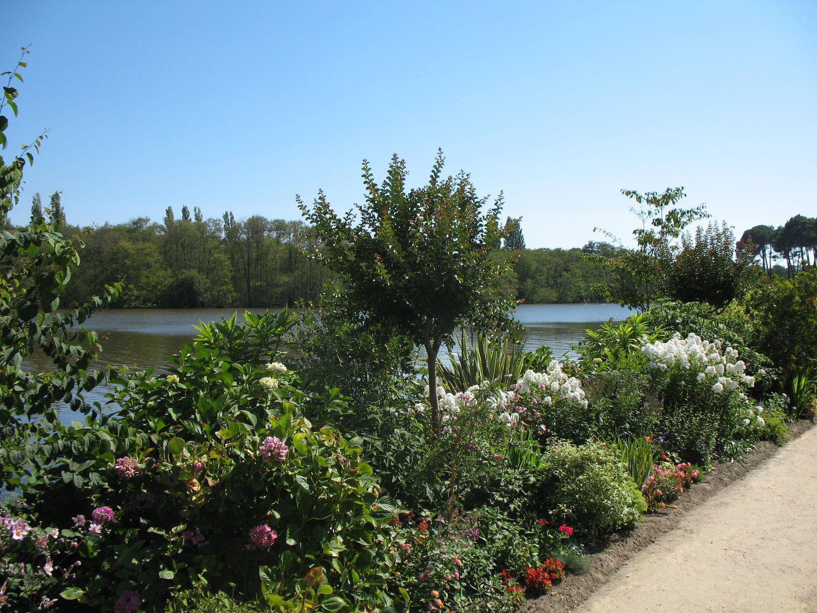 Lac d'Aureilhan-Mimizan_Mimizan